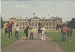 horse-postcard-woburn-abbey-racehorse-mare-mrs-moss