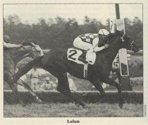 horse_lalun-big
